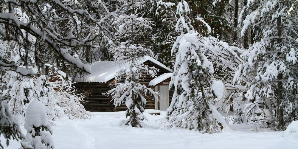 winter shack.jpg